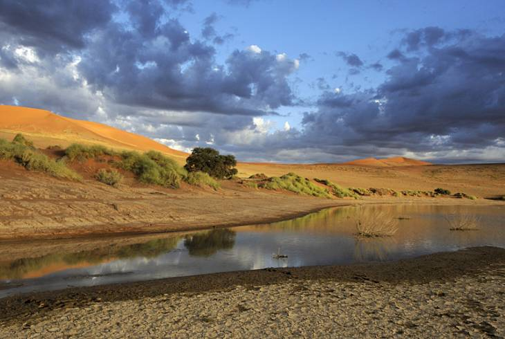 Sossusvlei... after rain