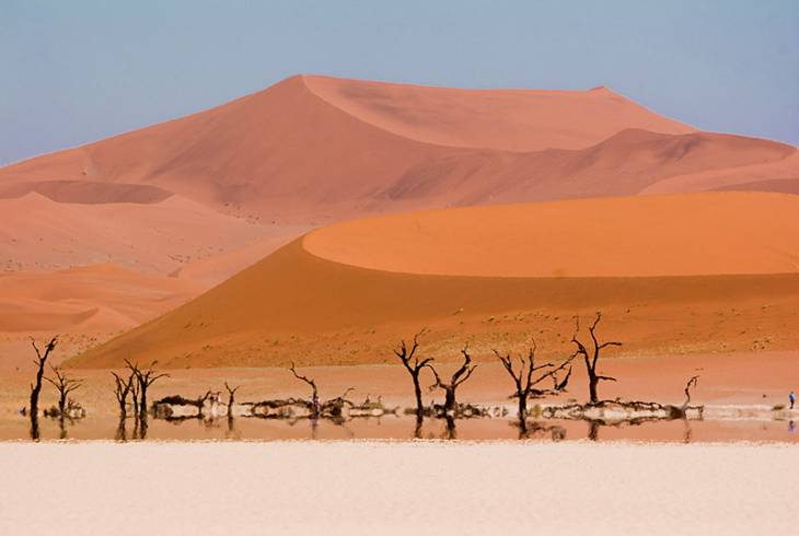 Deadvlei. The 900 Year Old Tree Graveyard Of Namibia