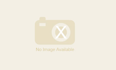 Camelot Guesthouse