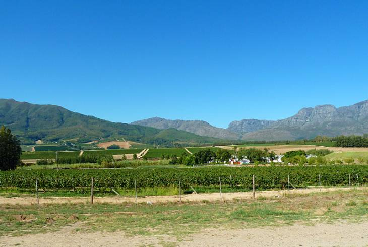 Sitting at the foot of the Groenberg, is Wellington in the Cape Winelands