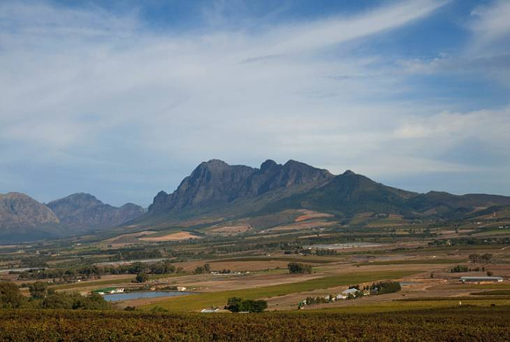 View of Winelands, Seidelberg Wine Estate, Cape Wine Route, Paarl