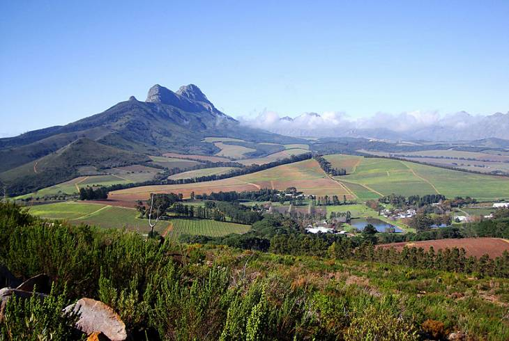 View from Delvera Farm in Klapmuts in the Cape Winelands